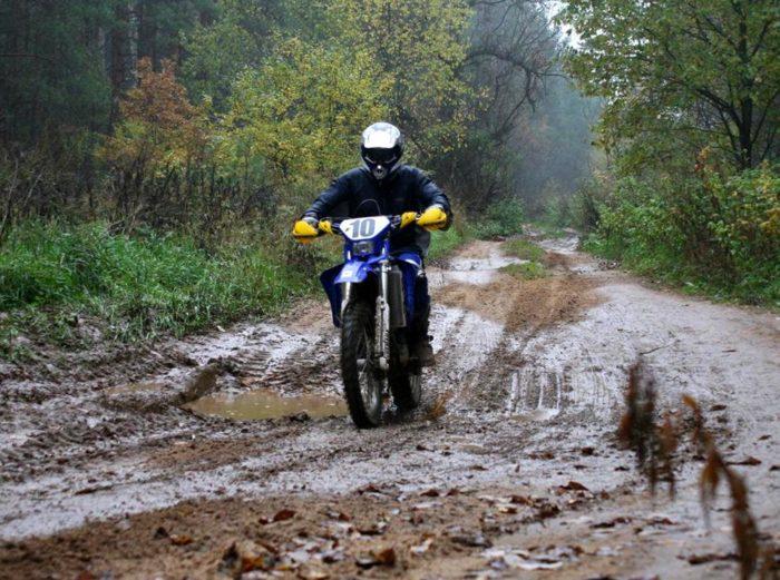 Мотоцикл в лесу