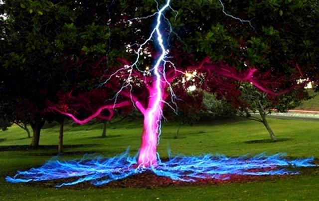 Молния бьет в дерево