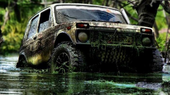 Нива в болоте