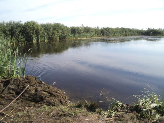 водоем на урочище